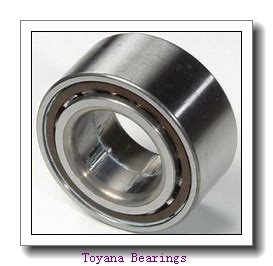 Toyana TUP1 45.25 plain bearings