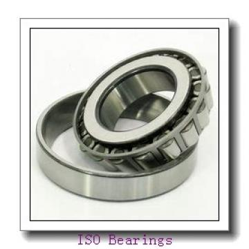 ISO BK5018 cylindrical roller bearings