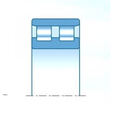 40,000 mm x 80,000 mm x 36,000 mm  NTN 2RN0819 cylindrical roller bearings